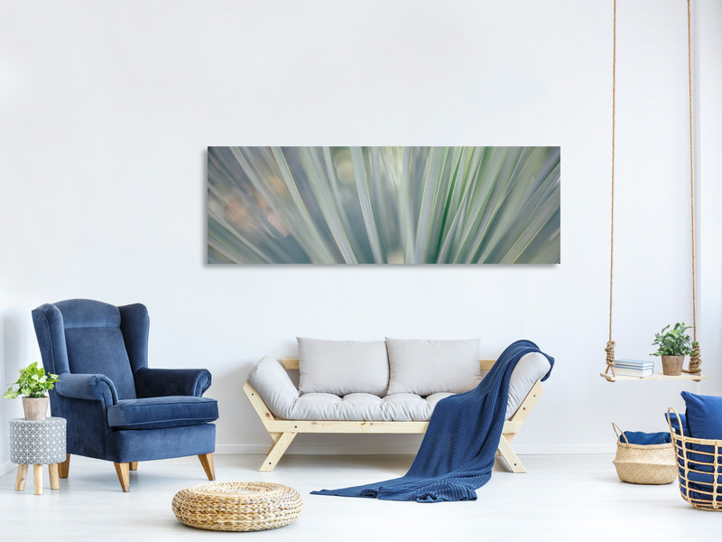 Panoramic Canvas Print Strip of plant