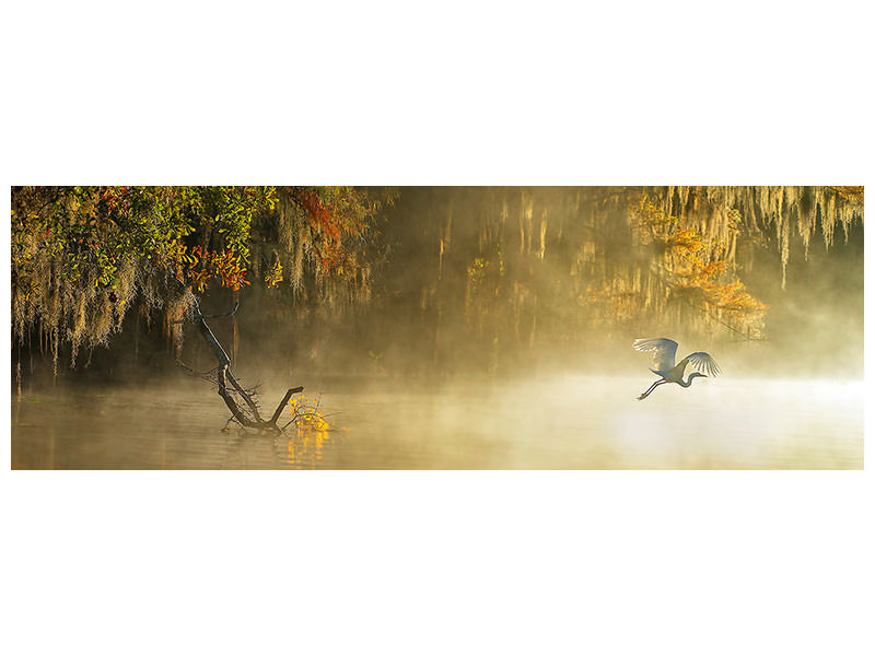 Panoramic Canvas Print Egret