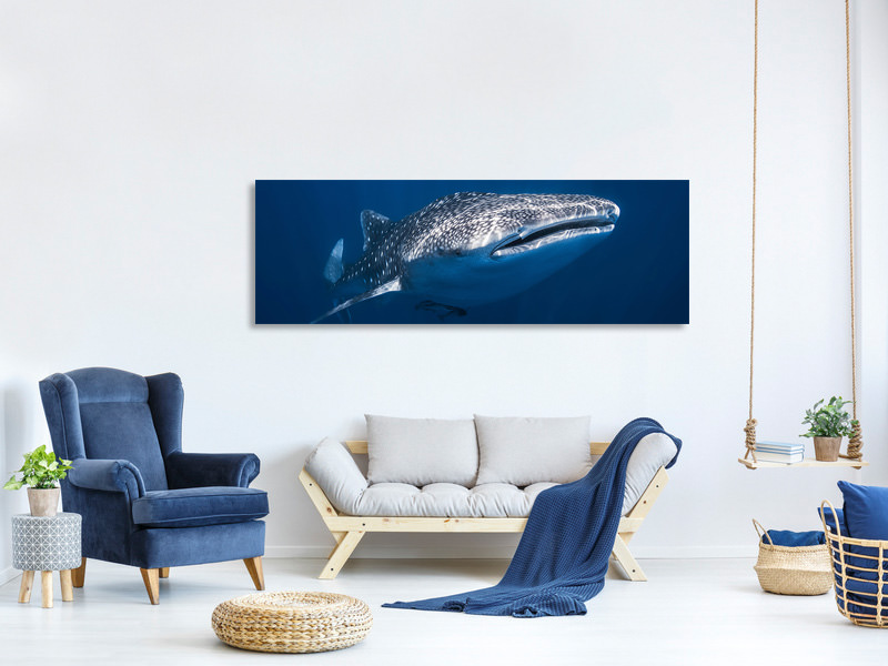 Panoramic Canvas Print Whale Shark