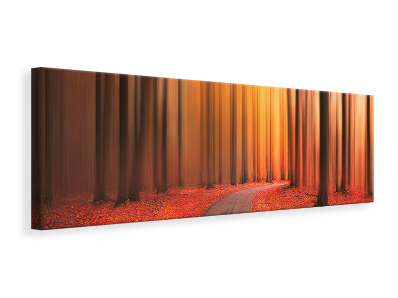 Panoramic Canvas Print Path To Unknown