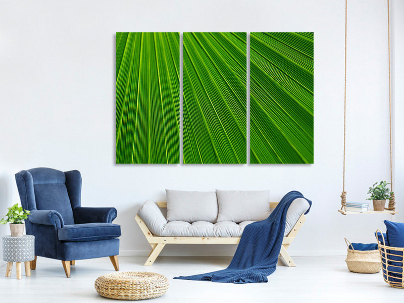 3 Piece Canvas Print Palm stripe 1
