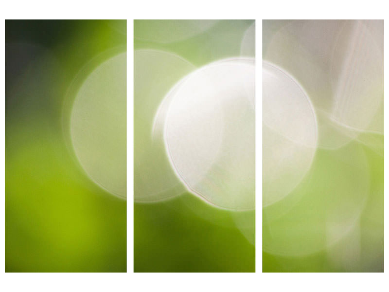 3 Piece Canvas Print Reflections balls