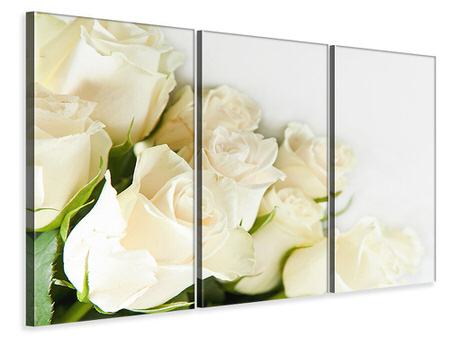 3 Piece Canvas Print White Roses