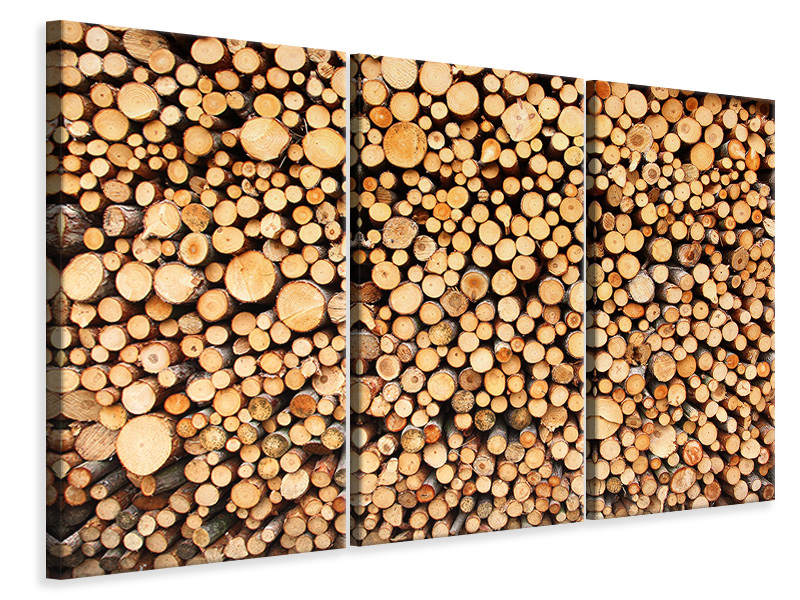 3 Piece Canvas Print Logs