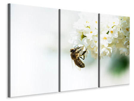 3 Piece Canvas Print The Bumblebee And The Flower