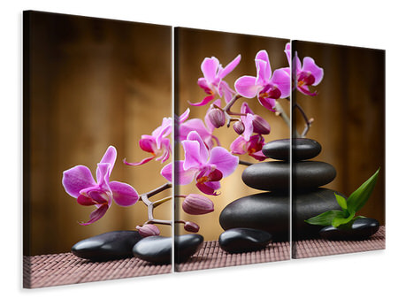 3 Piece Canvas Print Wellness Stones