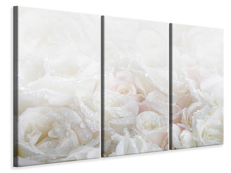 3 Piece Canvas Print White Roses In The Morning Dew