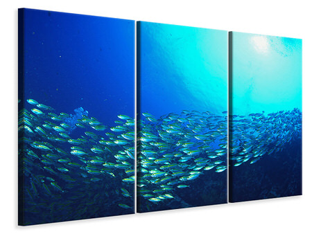 3 Piece Canvas Print Shoal Of Fish