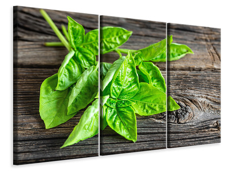 3 Piece Canvas Print Basil Leaves