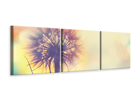 Panoramic 3 Piece Canvas Print The Dandelion In The Light