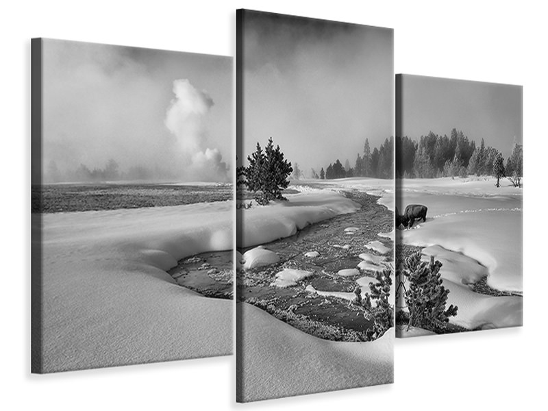 Modern 3 Piece Canvas Print The Hardship Of Winter
