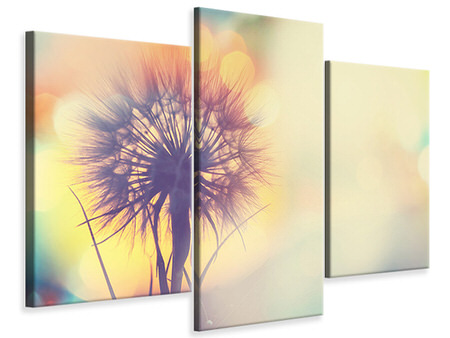 Modern 3 Piece Canvas Print The Dandelion In The Light