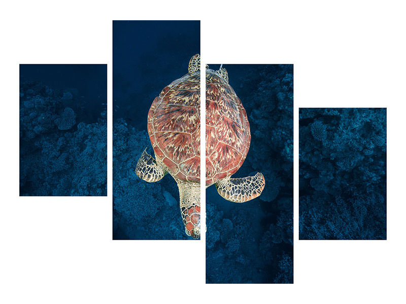 Modern 4 Piece Canvas Print Green Turtle On Blue Water