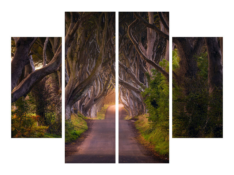 4 Piece Canvas Print The Glowing Hedges