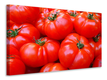 Canvastavla Fresh tomatoes