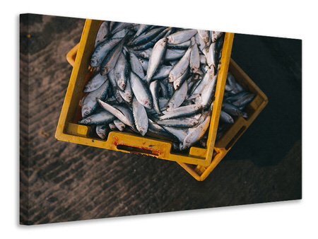 Canvas print Fish in boxes