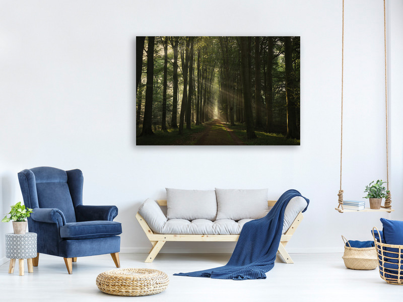 Canvas print The Essential
