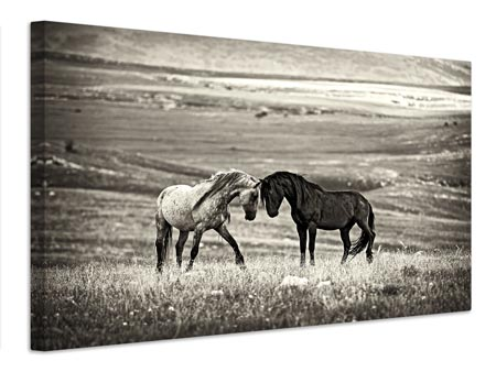 Canvas print close encounter