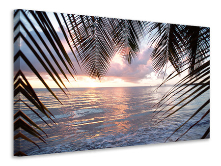 Canvas print Under Palm Leaves