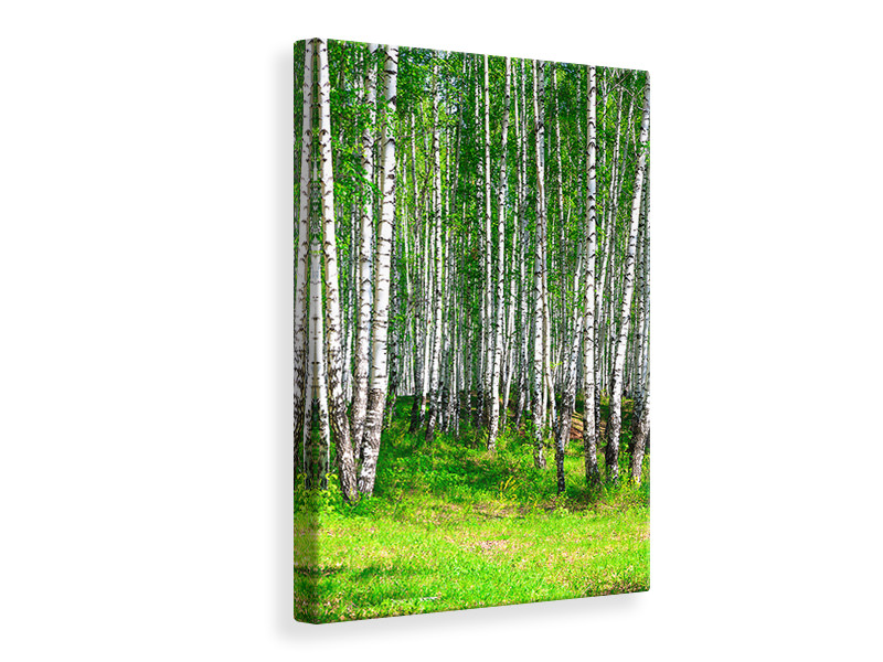 Canvastavla The Birch Forest In Summer
