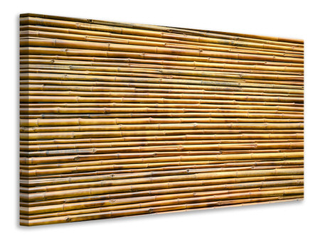 Canvastavla Horizontal Bamboo Wall