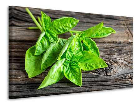 Canvastavla Basil Leaves